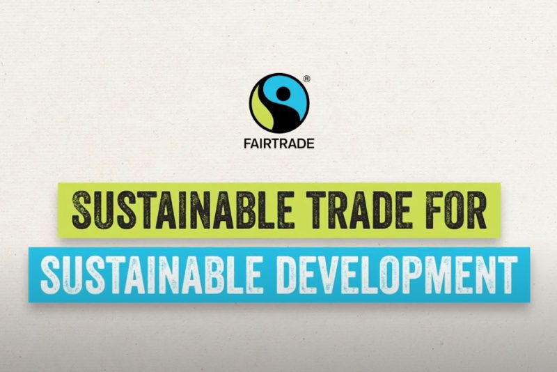 Sustainable Development Goals Video